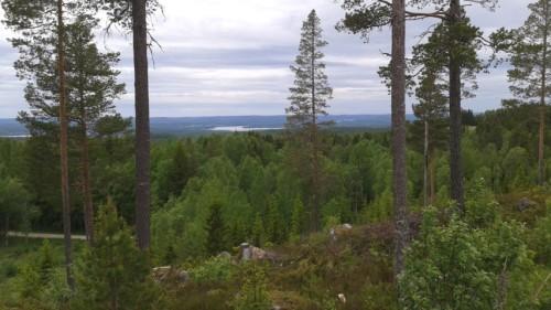 Utsikt från bystugan i Sösjö